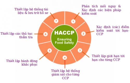 Các nguyên tắc cơ bản của HACCP