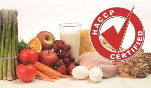 Dịch vụ cấp chứng nhận HACCP Code:2003