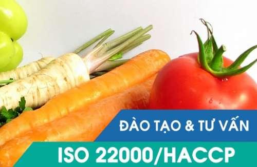 Kế hoạch tư vấn ISO 22000:2018
