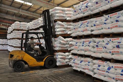 Chứng nhận ISO 9001:2015 lĩnh vực sản xuất phân bón