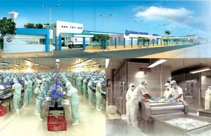 Xây dựng nhà xưởng theo yêu cầu ISO 22000